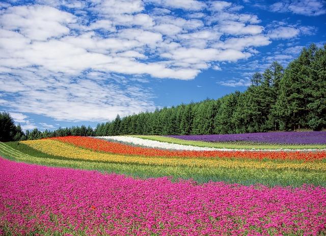 北海道(札幌)で工場の求人に応募したい人が、工場ワークスで仕事を探すべき3つの理由